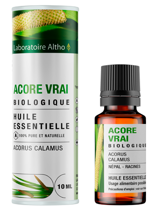 Organic Calamus essential oil