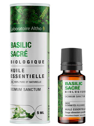 Huile essentielle de Basilic sacré bio