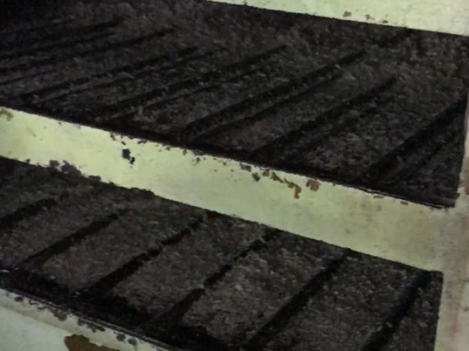 Séchage des pulpes broyees pendnat 20 min avant pressage