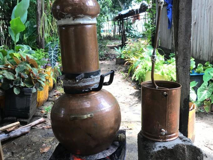 Distillation test pour analyse au Labo et validation du végétal mis en place