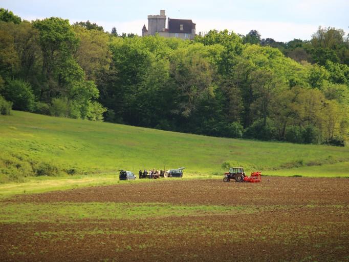 Nos plantations Bio (62ha) face à l'imposant château de Xaintrailles