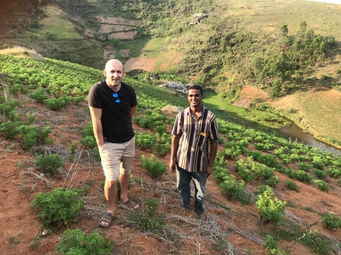 Nos plantations Bio de Géranium Bourbon